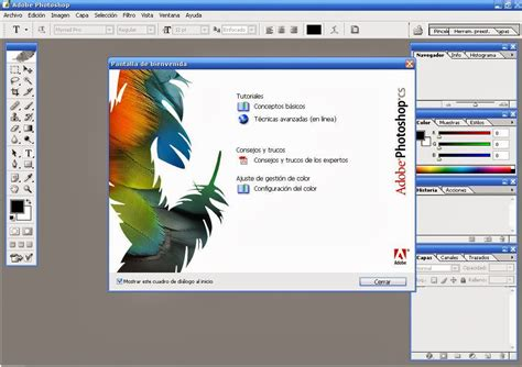 Adobe photoshop cs 8 download full version | Adobe Photoshop